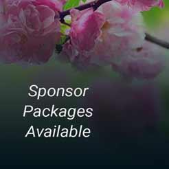 sponsor-ad-01-246px